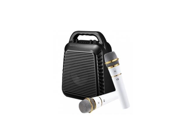 S90 Voice Amplifier