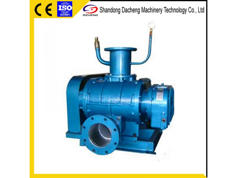 Dsr-V Long Service Life Roots Vacuum Blower Manufacturer with Ce Certificate