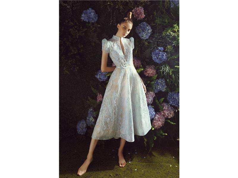 High and V-Neckline Short Sleeve Vintage Evening Dress, Zipper Back Design